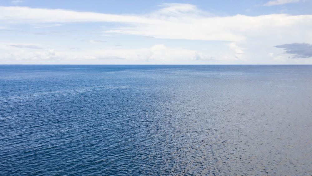 « Océan bleu », la stratégie d'après-pandémie, Marketing et Vente